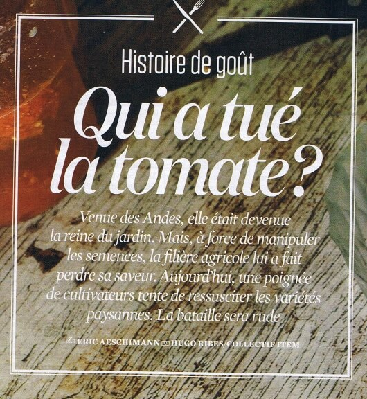 article N&O aout 2016 - tomates